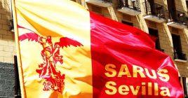 Bandera Sarus